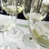 New Zealand Sauvignon Blanc: What You Need to be Pouring [and Aging!]