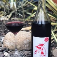 Le Sot de l'Ange 'La Boutanche' Vin de France 2017