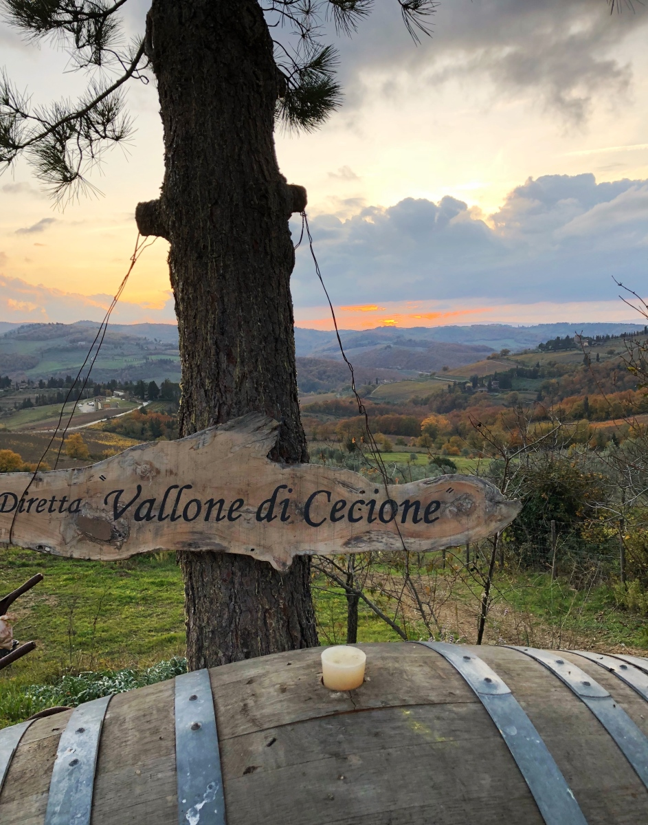 Francesco Anichini of Vallone di Cecione: A Man Rooted in his History and Land Just as his Vines